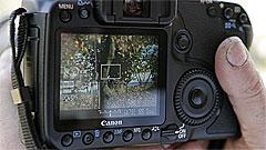 Canon EOS 40D: la specie prosumer si evolve