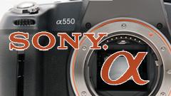Sony Alpha 550: alla ricerca del dettaglio