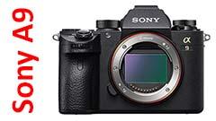 Sony A9, mirrorless delle meraviglie