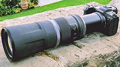 Canon EOS R5 e Canon RF 800mm F11 IS STM: primo contatto dell'accoppiata da paparazzi amatoriali