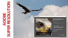 Adobe Super Resolution: miracoloso?