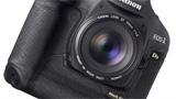 Meglio lasciare Nikon e passare a Canon: parola di Scott Kelby